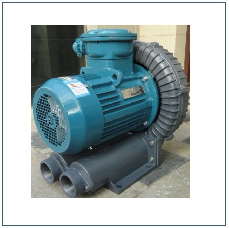 explosion proof biogas blowers